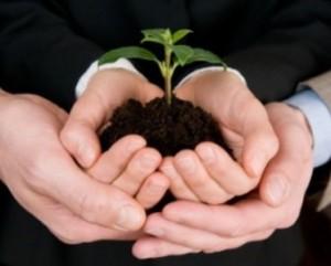 Trust exprès privé et trust charitable