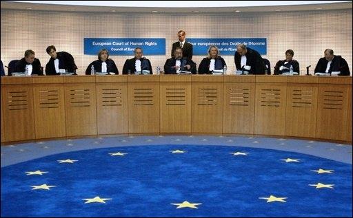 cour européenne des droits de l'homme le petit juriste
