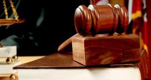 justice le petit juriste