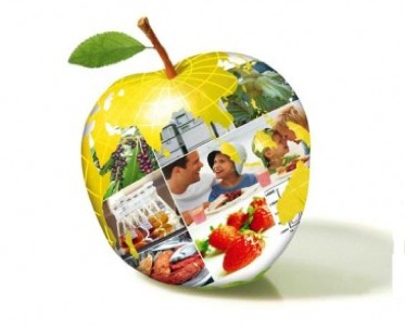 apple_globe-codex_alimentarius_commission_cac_accepted_30_new_food_standards-365x277