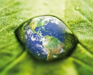 Six ans après la Charte de l'environnement: vers une portée véritablement constitutionnelle du droit