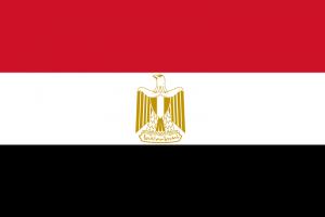 La nouvelle Constitution égyptienne : vers l'établissement d'un Etat de Droit ?