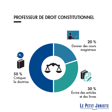 professeurdedroitconstitutionnel