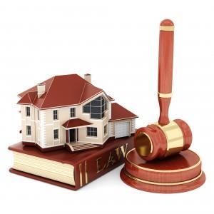 Droit immobilier – Trouble anormal de voisinage : Le chêne et la tempête