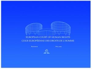 Droit de la santé – l'Affaire Vincent Lambert devant la CEDH le 5 Juin 2015
