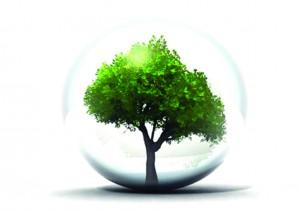 Droit de la construction – Rénovation des bâtiments et croissance verte