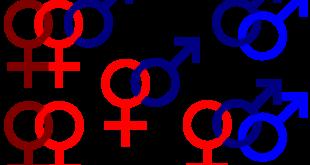 Image projet d'article sexe                                neutre